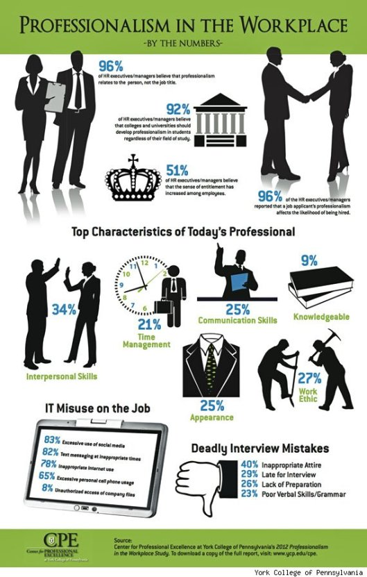 2012-professionalism-in-the-workplace-study-visual-snapshot-copy